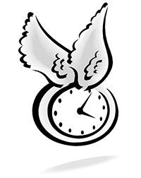 SAUA-Time-Flies
